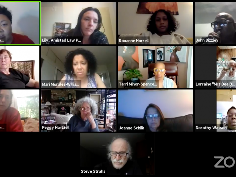 A screenshot shows a number of zoom participants with Kris Henderson addressing the audience